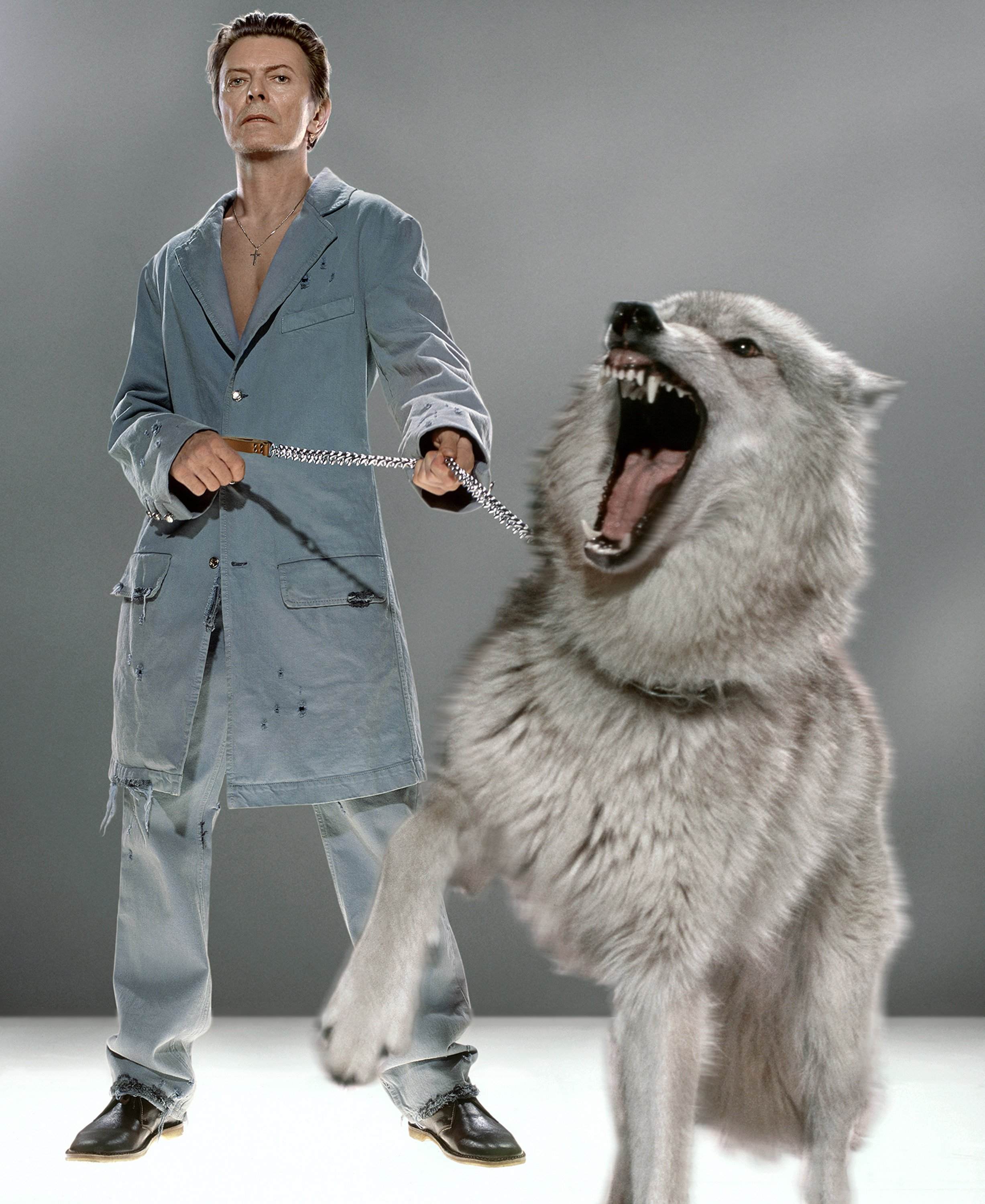David Bowie with Wolves